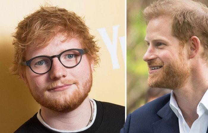 Prince Harry, Ed Sheeran in  hilarious video making fun off their hair