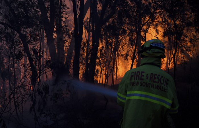 Australian state NSW declares emergency as wildfires continue