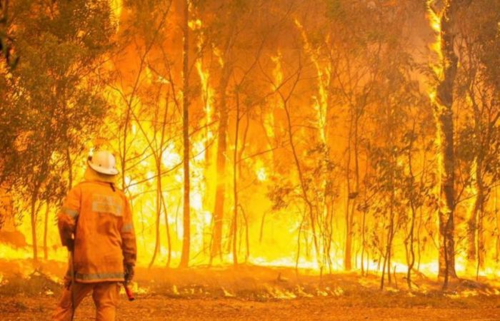 Australia's hottest November caused bushfires burning