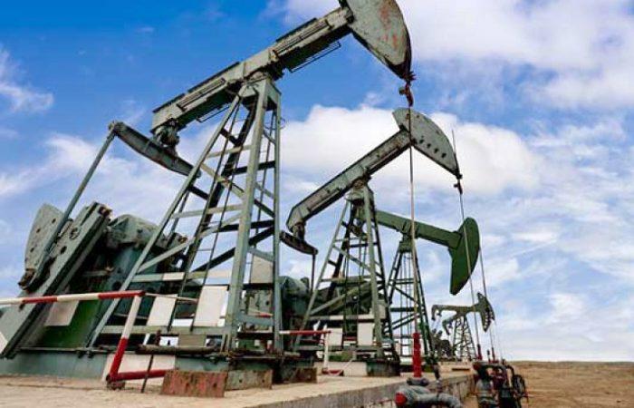 Oman picks woman to head oil company