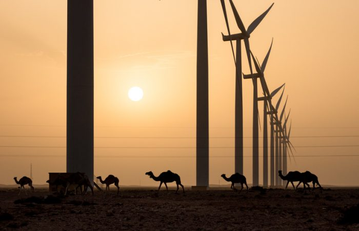 Siemens Gamesa delivers turbines to Djibouti wind farm