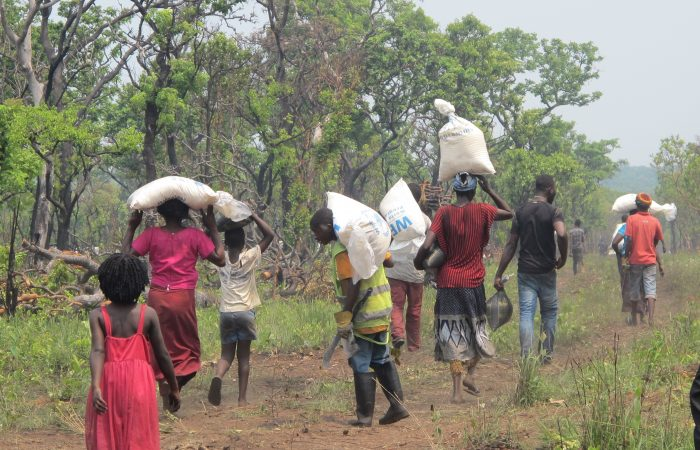 Hunger rises as severe drought grips Angola, WFP said