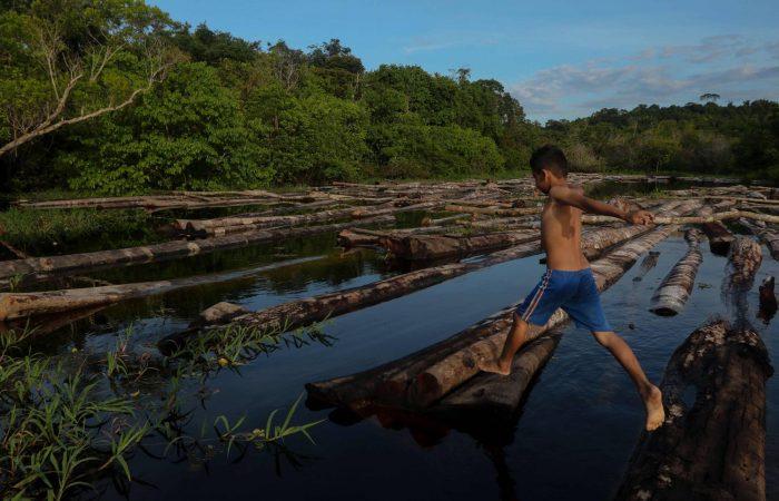 Deforestation in Brazil's Amazon rainforest rises for 2nd straight month