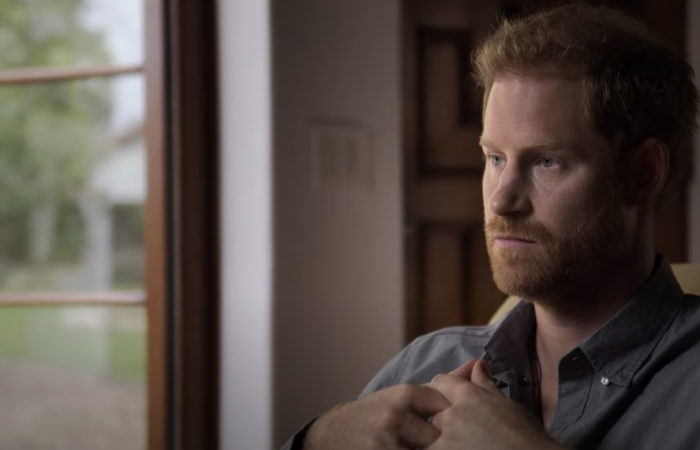 Prince Harry accuses Royal Family of 'total neglect' in documentary