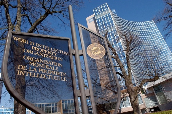 UN: Innovation continued even as COVID emerged